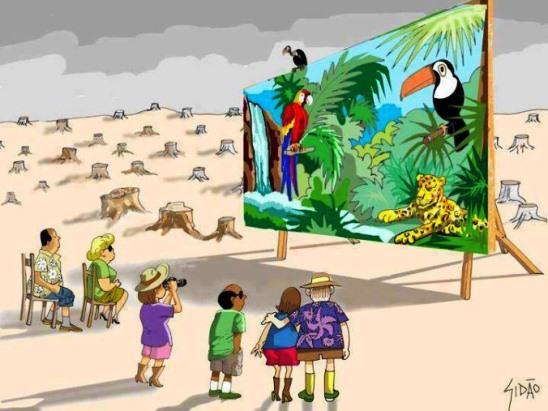 Consecuencias sociales de la desforestación