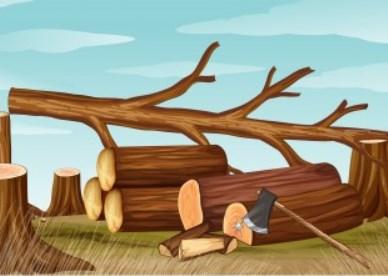 Dibujos de la deforestación