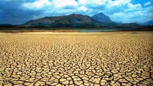 ¿Qué es la desertificación?