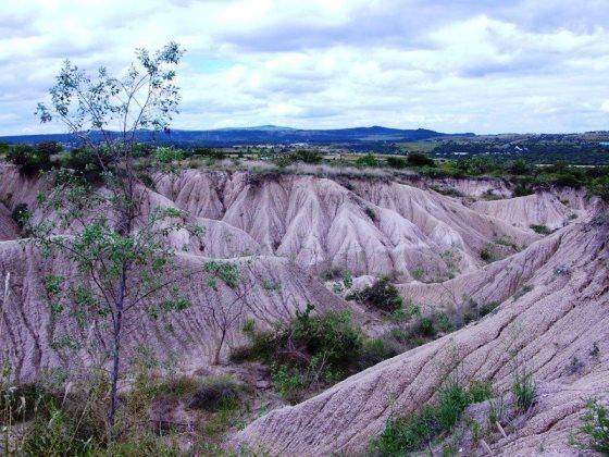 Relación entre deforestación y erosión